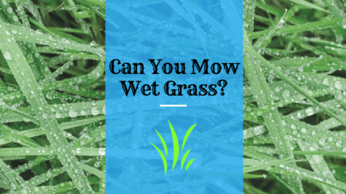 can you mow wet grass