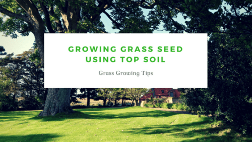 Growing Grass Seed Using Top Soil