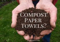 can you compost paper towels