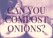 can you compost onions