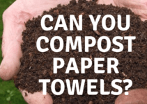 compost paper towel
