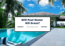 Does pool water kill grass