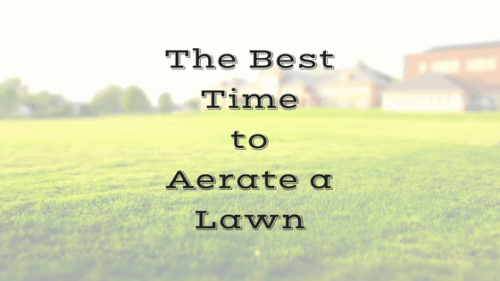 When To Aerate A Lawn