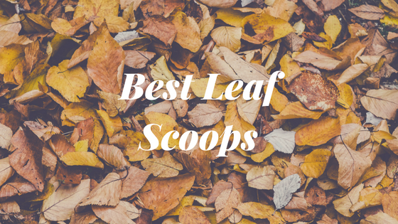 Best Leaf Scoops