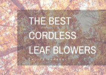 Top cordless leaf blowers
