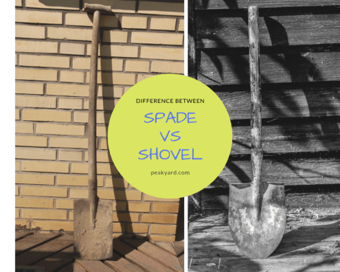 Difference Between Spade And Shovel