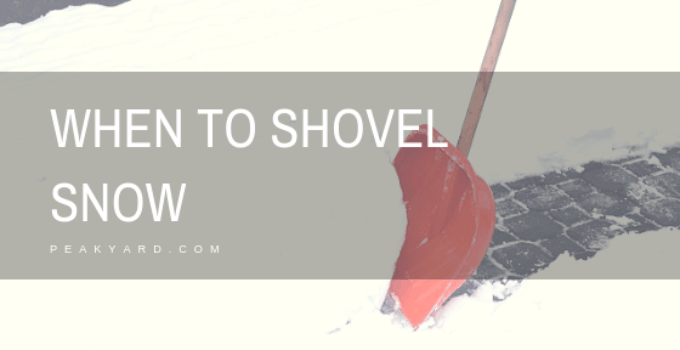 shovel while still snowing
