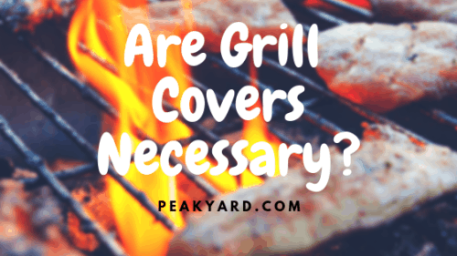 Are Grill Covers Necessary?