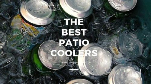 best cooler for patio