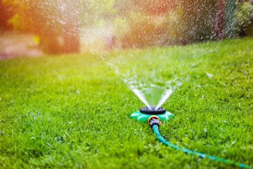 Best Sprinklers For A Small Area
