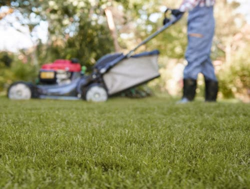 Can You Pull A Self-Propelled Lawn Mower Backwards?