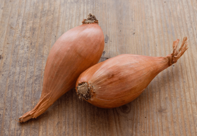 Two shallots unpeeled